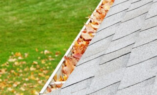 A residential home roof gutter is filled mostly with autumn sugar maple tree leaves. Fallen leaves can also be seen on the ground down below. Copy space.