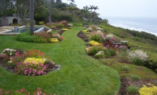 Landscaped Seaside Yard