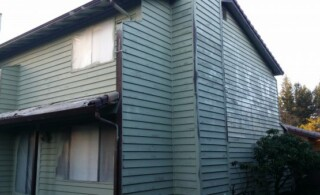 Exterior paint removal