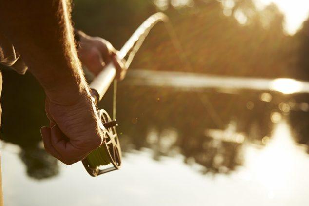 Man fishing in sunny pond
