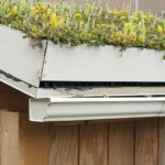 "A rooftop garden or ""green roof"". The container garden is on top of a shed at an elementary school that is teaching the children how a ""living roof"" absorbs rainwater, provides insulation, and helps to lower urban air temperature within the shed."